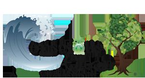 Conscious Clean logo
